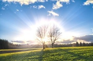 Svetloba je nujno potrebna za tvorbo vitamina D in za nekatere hormone